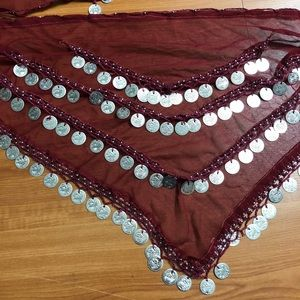 Other - Belly Dance Hip Scarf